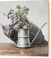 Russian Blue 03 Wood Print