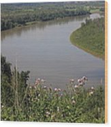 Russian Thistle By The North Saskatchewan River Wood Print