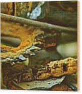 Rust Abstraction Wood Print