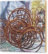 Rusted Spring 1 Wood Print