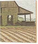 Rustic Barn And Field Rows Wood Print