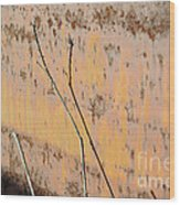 Rustic Landscape Wood Print