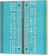 Rustic Thermometer Wood Print