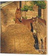 Rusty And Brown Sugar Wood Print
