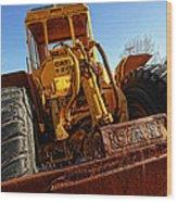 Rusty Gold Cat 824 Wood Print