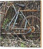 Rusty Wheel Of Bicycle Wood Print
