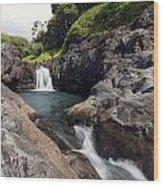 Sacred Pool Falls Wood Print