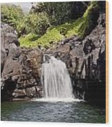 Sacred Pool Waterfall Wood Print