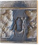 Sacred Scarab. Wood Print by JSM Fine Arts John Malone