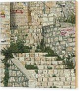 Safed Galilee Israel Wood Print