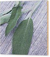 Sage Leaves Wood Print