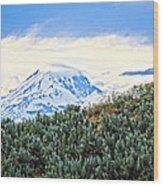 Sage Mountain Wood Print