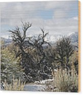 Sagebrush And Snow Wood Print