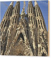 Sagrada Familia Barcelona Spain Wood Print by Matthias Hauser