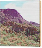Saguara National Forest In Arizona Wood Print