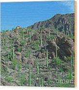 Saguara National Forest Protected Cactus Wood Print
