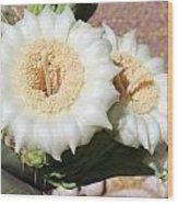 Saguaro Cactus Flowers Wood Print