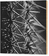 Saguaro Nights Wood Print