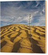 Sahara Desert, Tunisia, Africa Wood Print