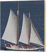 Sailboat In The San Francisco Bay . 7d7900 Wood Print
