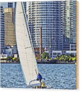 Sailboat In Toronto Harbor Wood Print