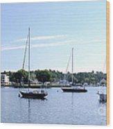 Sailboats In Bay Wood Print