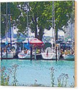 Sailboats In Dock Wood Print