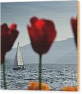 Sailing Boat And Tulip Wood Print