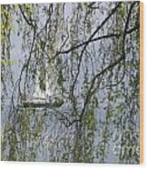 Sailing Boat Behind Tree Branches Wood Print