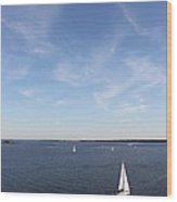 Sailing Charleston Harbor Wood Print