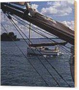 Sailing Coastal Maine Wood Print