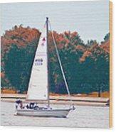 Sailing Day Wood Print