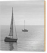Sailing In Calm Waters Wood Print