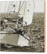 Sailing The Icw -1 Wood Print