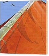 Sails Five Wood Print by Kathleen Horner