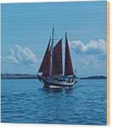 Sails Off The San Juans Wood Print