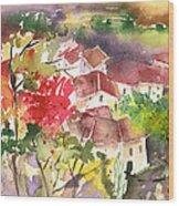 Saint Bertrand De Comminges 15 Wood Print