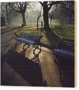 Saint Stephens Green, Dublin, Co Wood Print