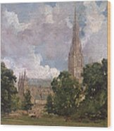 Salisbury Cathedral From The South West Wood Print