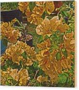 Salmon Bouganvilla Wood Print