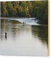 Salmon Hunting Skok Style Wood Print