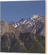 Salt Lake City Wood Print