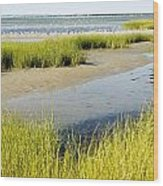 Salt Marsh Habitat With Flock Of Birds Wood Print