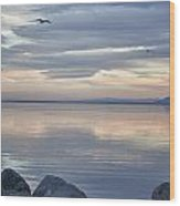 Salton Sea Sunset Wood Print