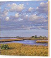 Saltwater Marshes At Cedar Key Florida Wood Print by Tim Fitzharris