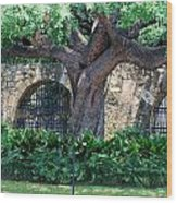San Antonio Shade Wood Print
