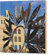 San Antonio Texas 7 Wood Print