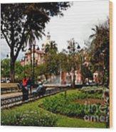 San Blas Park In Cuenca Ecuador Wood Print