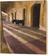 San Cristobal Shadows Wood Print
