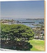 San Diego Wood Print